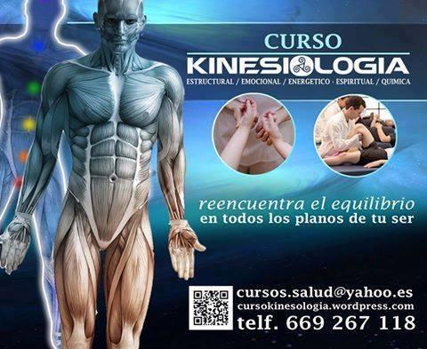 Curso de kiniesiología holística